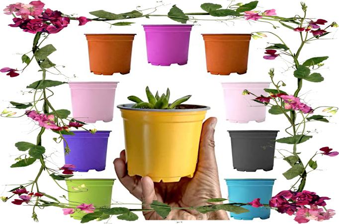 گلدان پلاستیکی مربع